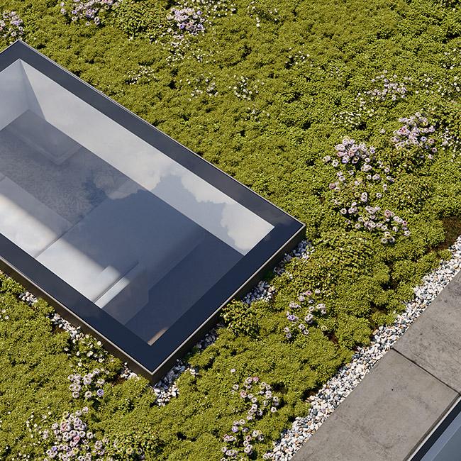 ECO Fixed + Upstand (DG) Rooflight 800mm x 2000mm